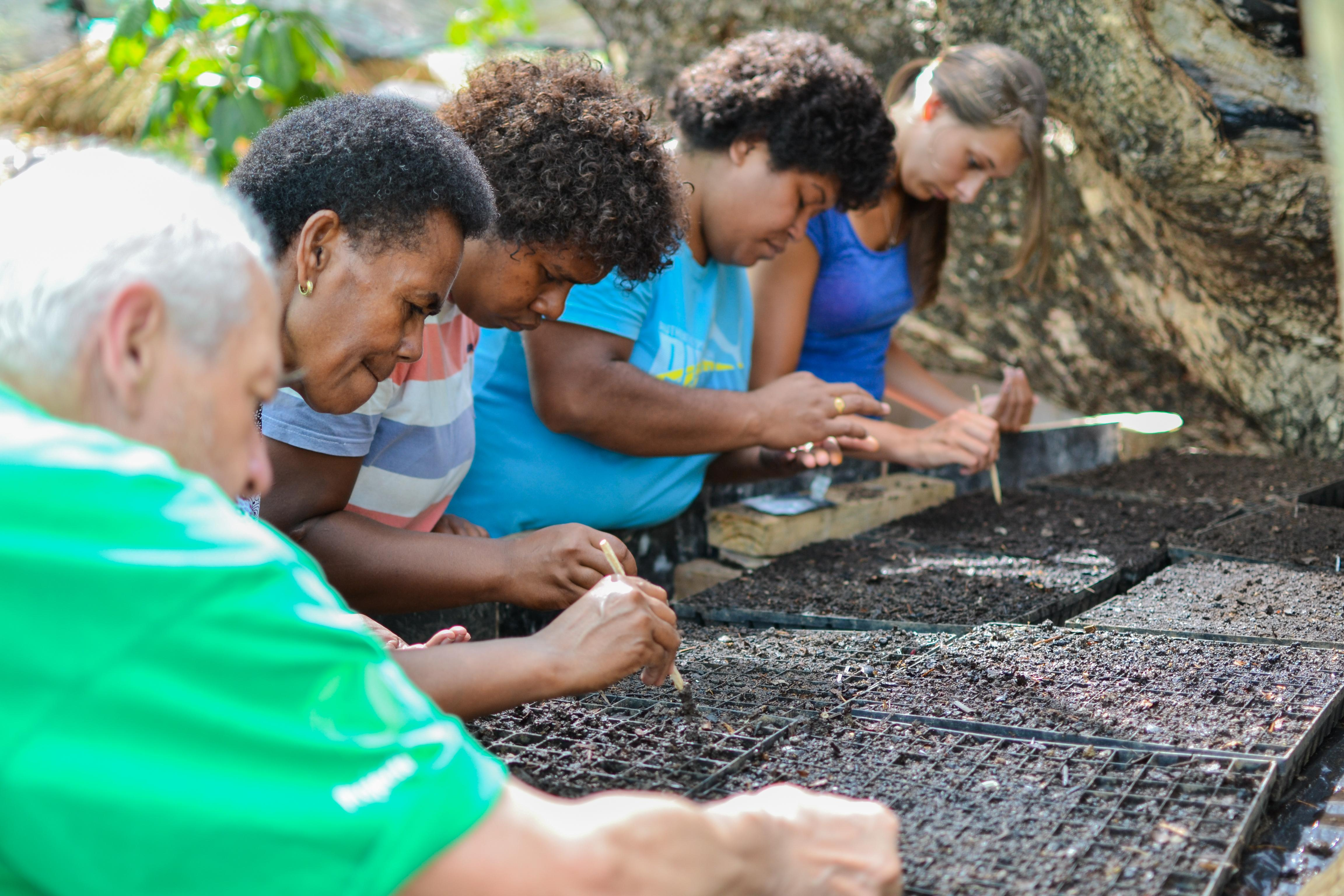 Projects Abroad nutrition interns plant seeds with local residents during their nutritional internship in Fiji.